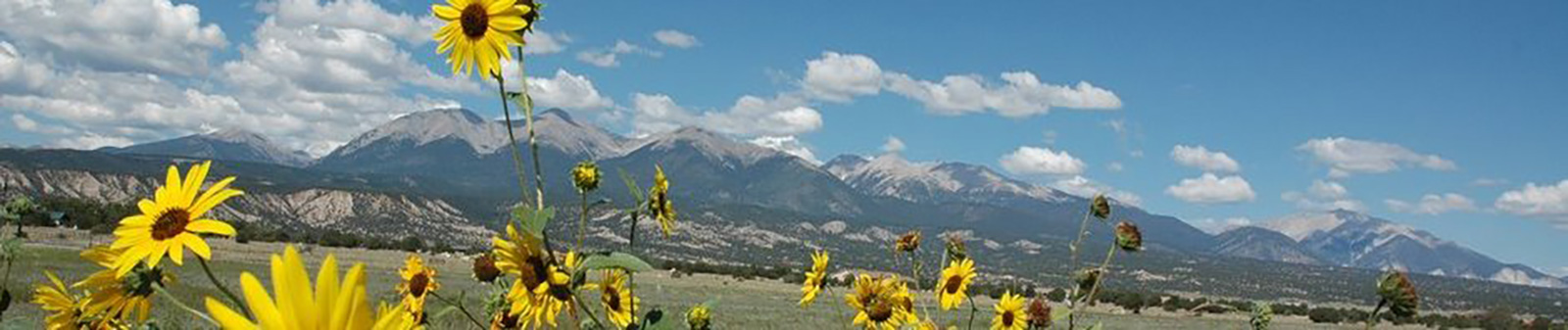 Colorado Mountain Realty